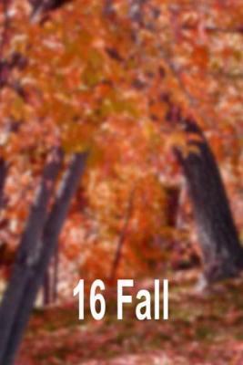 16-fall