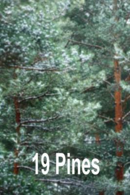 19-Pines