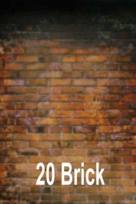 20-brick
